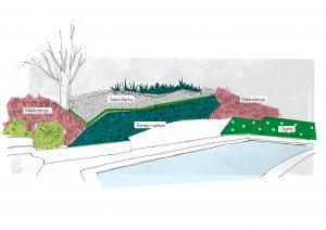 Diseño de jardín en Ciudalcampo
